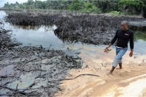 Shell admits spilling 260,000 litres of oil in Bodo, Nigeria, in 2008, but independent experts say it was at least 7.8 million litres, and possibly over 49 million.  After three years, Shell has not cleaned up the oil or paid compensation.