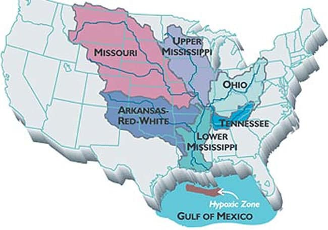 """Farmland runoff containing fertilizers and livestock waste, some of it from as far away as the Corn Belt, is the main source of the nitrogen and phosphorus that cause the annual Gulf of Mexico """"dead zone."""" Image credit: Donald Scavia"""