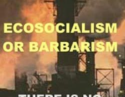 Ecosocialism or Barbarism: There is No Third Way